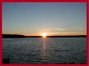 Redwing Sunset