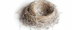 Small epmty bird's nest made of twigs and dried foliage on a white studio background