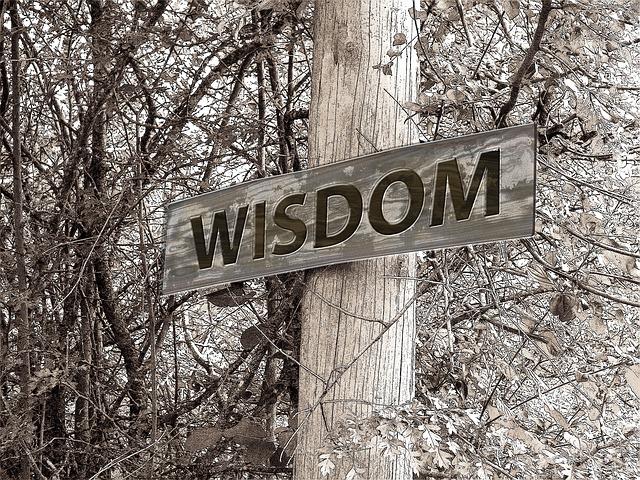wisdom229117_640