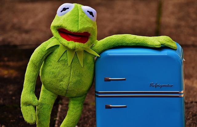 kermit-refrigerator